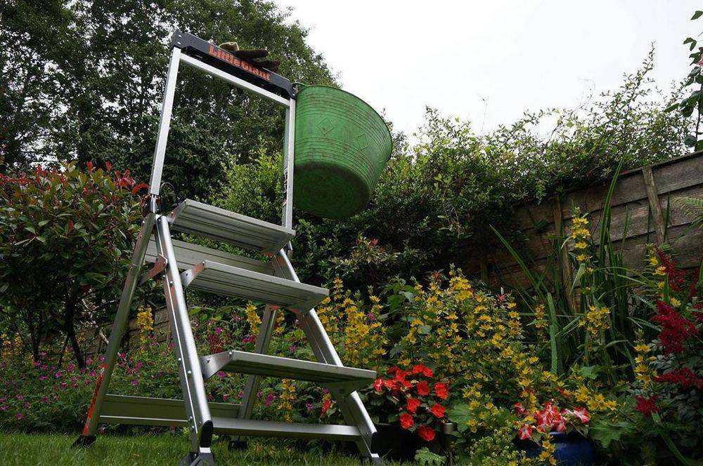 Step ladder with tool trays for your tools